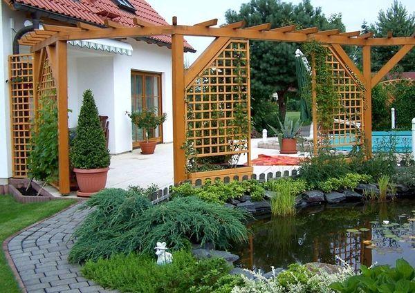 Вертикальное озеленение участка: фото конструкций
