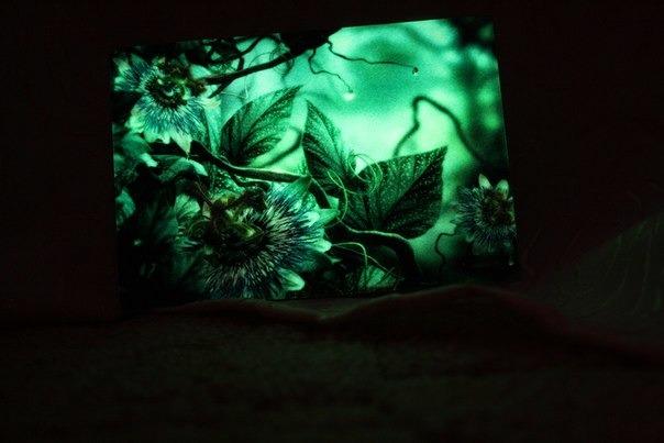 Картины светящиеся в темноте своими руками 38