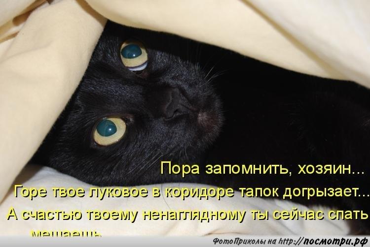 Не спишь картинки с надписями