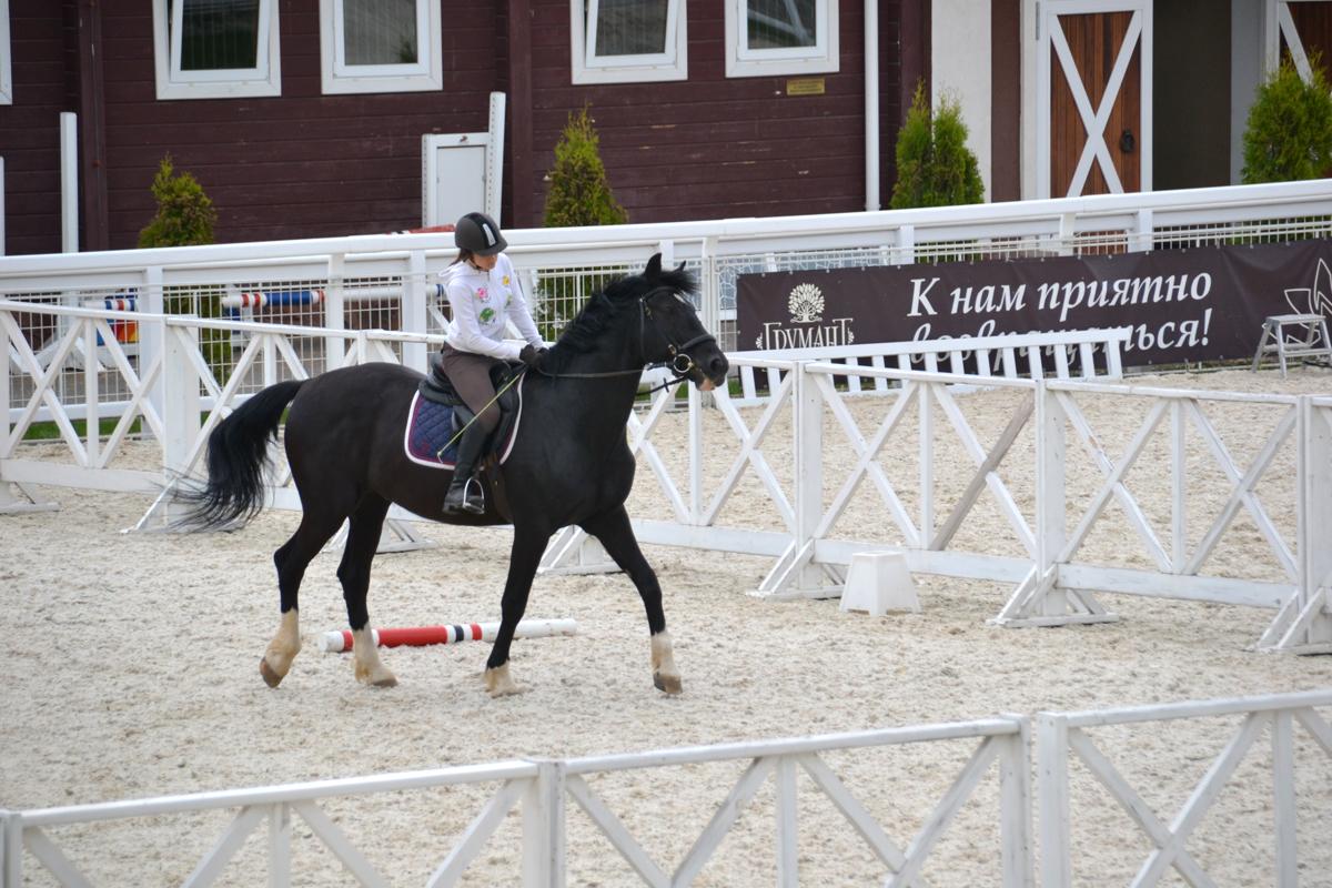 7. Очень красивые конюшни и тренировочные поля с белым песком.